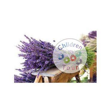 Mai multe despre Atelierul de Aromaterapie